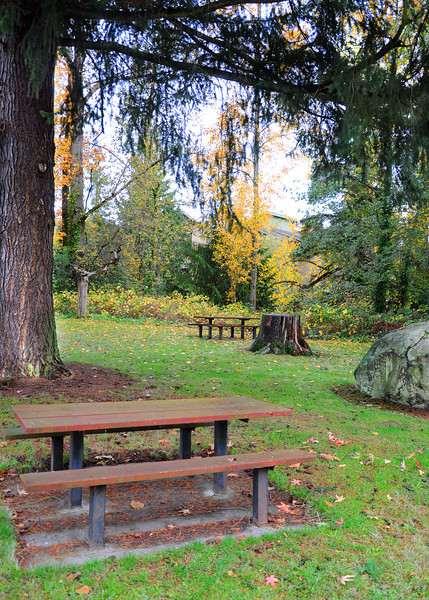 Scriber Creek Park