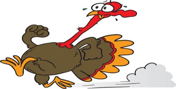 Turkey Trot 5k Lynnwood Today