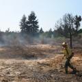 Lake Ballinger Fire Update