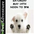Pet Adoption Day at Pet Adventure Saturday and Sunday