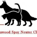 Lynnwood Spay and Neuter Clinic Open House August 21-22