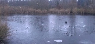 Be careful around frozen water, sheriff's department advises