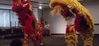 Scene in MLT: Lion dance, martial arts demonstration