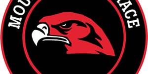 Hawks sports roundup: Baseball loses 7-1 to Stanwood; boys soccer beats Monroe 3-1