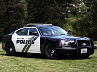 MLT Police Blotter, week of June 4-10