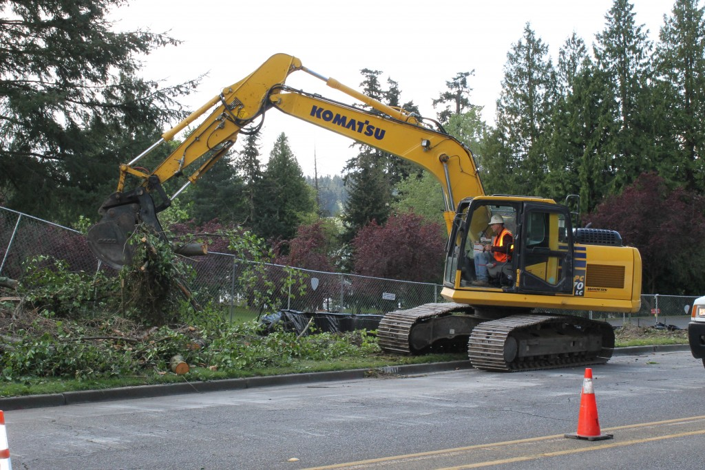 In order to make room for the Lakeview Trail, a number of trees are being removed along 236th Street SW just north of the Nile Golf and Country Club.