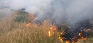 Happening nearby: Lynnwood Fire Department puts out brush fire at Meadowdale High School