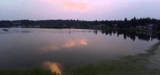 On video: Lake Ballinger water lilies and sunset