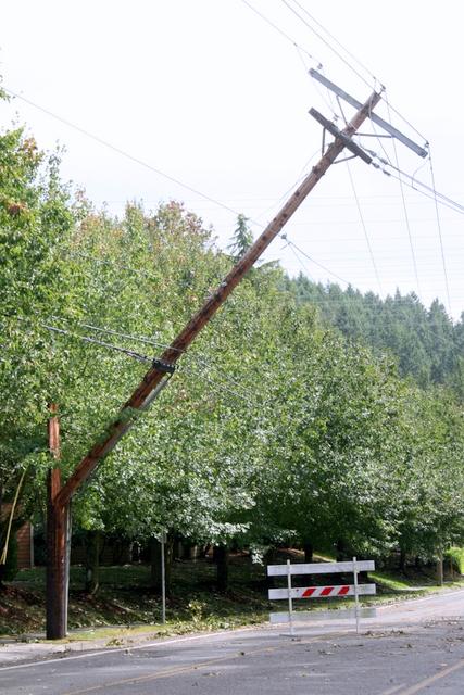 A broke powerline pole in Mountlake Terrace.