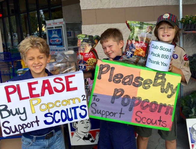 Lucas, Owen, and Henry from Cub Scout Pack 850 were selling popcorn to benefit the Cub Scouts Sunday afternoon. They will be at the Thriftway store at Ballinger Village until 3 p.m. (Photo by David Carlos)