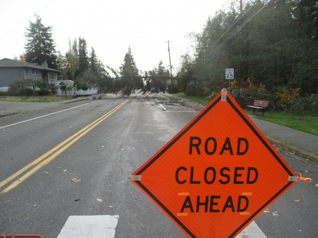 A large evergreen tree is blocking 48th Ave. W., south of 221 St. in Mountlake Terrace. The city of Mountlake Terrace and a PUD crew have been out to the scene today, briefly, but the tree remains in the street. The homes next to the downed tree which fell on power lines still do not have power and homes south of the downed tree toward Terrace Creek Park also do not have power.