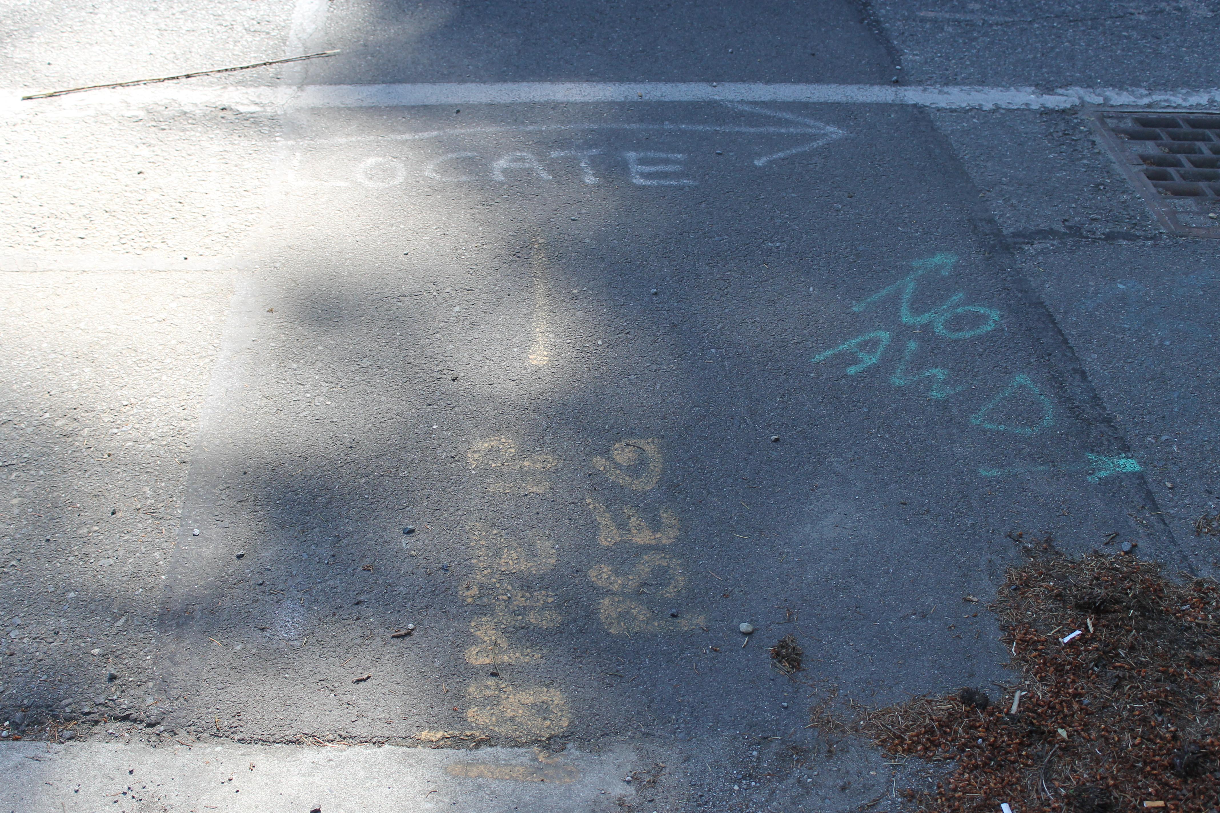 Locust Way, June 6 006.jpg
