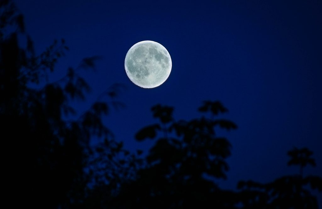 Tuesday night's moon was at a Waxing Gibbous phase. In two days, the full moon is what is called a Sturgeon Moon.  American Indians called it this because sturgeon were most easily caught during this time. (Photo by David Carlos)