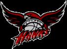mountlake-terrace-hawks-aau-logo