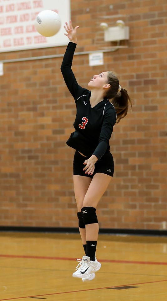 The Hawks' Isabel Ong executes a jump serve.