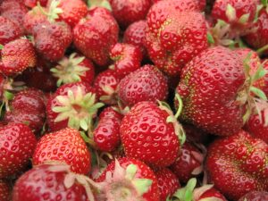Planned for Saturday's market: strawberries!