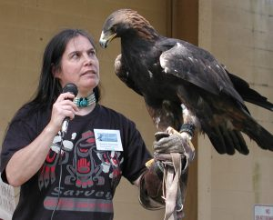 A scene from a past live raptor demonstration at Bird Fest.