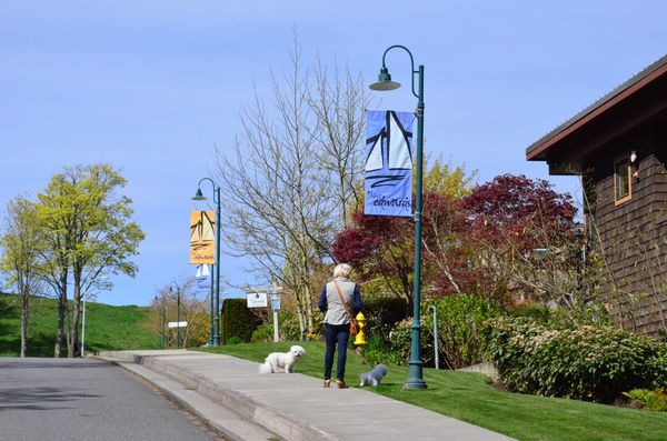 Point Edwards has partnered with Snohomish PUD and the US Department of Energy to replace all common area and street lighting fixtures with new energy-efficient LED's. The project reduces Point Edwards energy footprint by more than half.