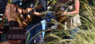 Scene in Edmonds: Mellow music at Hazel Miller Plaza