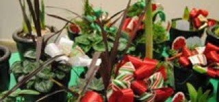 Edmonds CC to host annual Holiday Craft Village fair Nov. 20