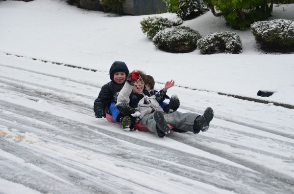 The snow gave students an unexpected break as Edmonds public schools closed for the last day before the winter holiday. Tyler, Jake and Markus took full advantage of the day of freedom to dust off their sled and do some serious tobogganing down Vista Way.