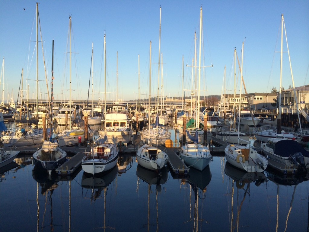 From Julie Van Tosh, taken at the Edmonds Marina Monday afternoon.