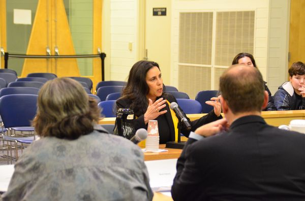 Deborah Anderson makes a point as she responds to questions from the council.  Anderson is currently Executive Director of the Edmonds Public School and Alumni Foundation.