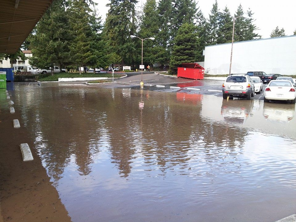 Here are photos outside Value Village taken by Gary Gage.