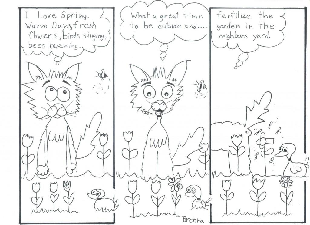 caffeine kitty brennas