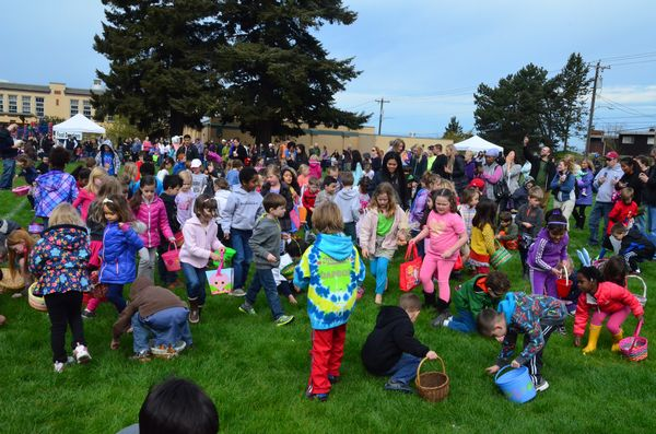 """This year's event was the first sponsored by the Edmonds Daybreakers Rotary. """"We're learning a lot,"""" said event coordinator Nancy McDonald.  This year the event was broken into 3 separate eggs hunts for different age groups. """"We wanted to make sure that the younger ones got a chance to fill their baskets too,"""" said McDonald.  Here the younger age group (3-4 years) sifts through the grass for toys and candy."""