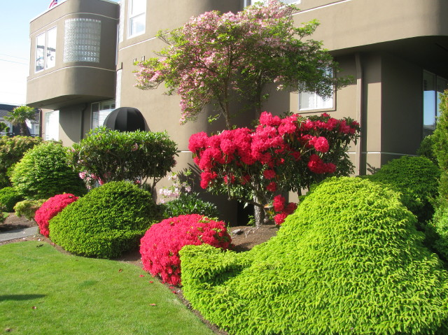 Linda Ross took advantage of a sunny day Wednesday to photograph all the gorgeous spring flowers around town.