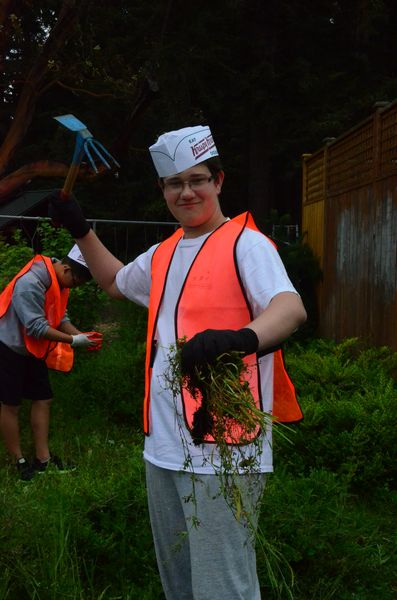 """Watch out for Kings student Robbie Simanton of Edmonds as he wields a mattock. The tool's formidable teeth  and blade have earned it the name """"zombie killer"""" among grounds workers.  Whatever name you choose, Simanton finds it makes short work of clearing noxious weeds."""
