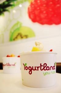 Yogurtland-199x300