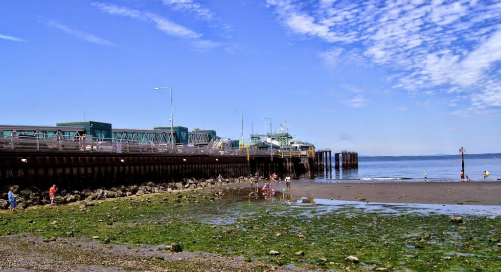 Beach explorers during the low tide in Edmonds Saturday. (Photos by David Carlos)