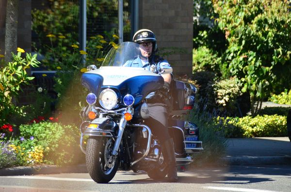 """From Larry Vogel: Edmonds police are clearly following up on their recent announcement to step up efforts to ensure pedestrian and traffic safety. This motorcycle officer, barely noticeable behind the corner plantings, was seen closely watching traffic Thursday morning at Fifth and Dayton.  Police say they will be issuing citations for failure to yield to pedestrians in crosswalks, and for motorists practicing """"California stops"""" at stop signs. Here's a link to the informational flier they will be passing out to those who are stopped."""