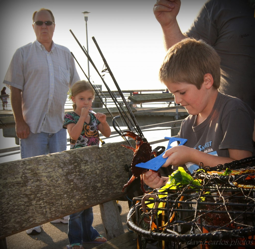 David Carlos found this family with their last catch of the day on Edmonds Fishing Pier, measuring to ensure   this red rock crab was big enough to add to their catch. Red rock crabs must measure at least 5 inches to be kept, under state regulations.