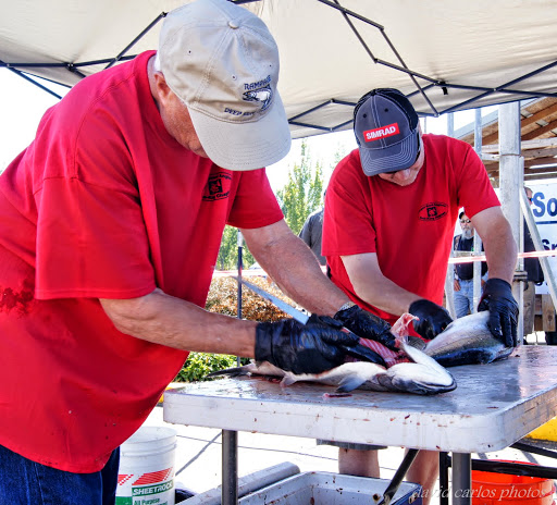 Derby officials cleaning out coho salmon for contestants.