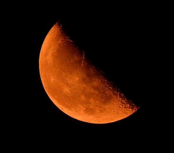 From Dan Palmer, the moon over Edmonds as seen at 12:30 a.m. Monday.