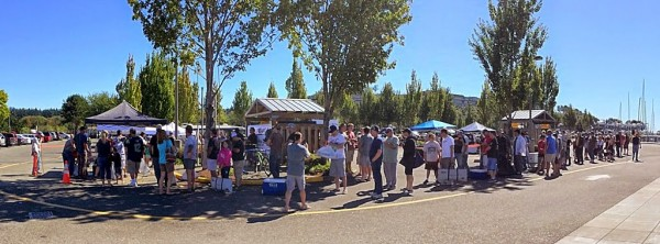 A panorama of the line of derby contestants waiting to have their fish cleaned and weighed.