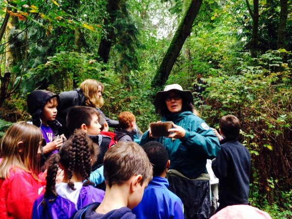 """Third graders from Westgate Elementary listen to Barb Drake, one of six rangers from the City of Edmonds, who taught """"Discover The Forest"""" on a hike through Yost Park earlier this month.  Students enjoyed exploring the trails and observing the plants and animals under the guidance of a park ranger. They saw woodpeckers, beetles, spiders, worms, different kinds of moss, salmonberry plants, shelf fungus, and many other interesting living things. They also learned about decomposition, the cycle of the forest, and plant/soil ecology."""