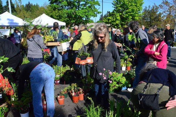 This year's Floretum plant sale generated more than $3,100 earmarked for college scholarships to help local horticultural students.  Floretum members grow and propagate plants all year for the sale.