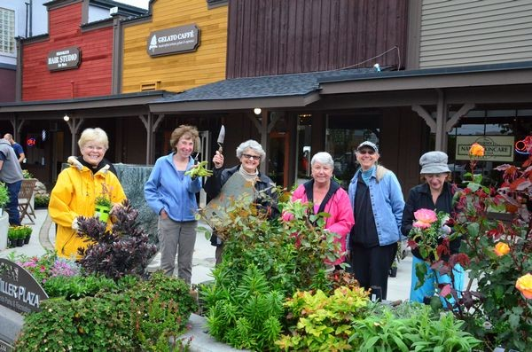 Floretum members gather on Tuesday morning to put more than 1000 plants into the beds at Hazel Miller Plaza.