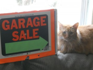 Twinkles welcomes you to the garage sale.