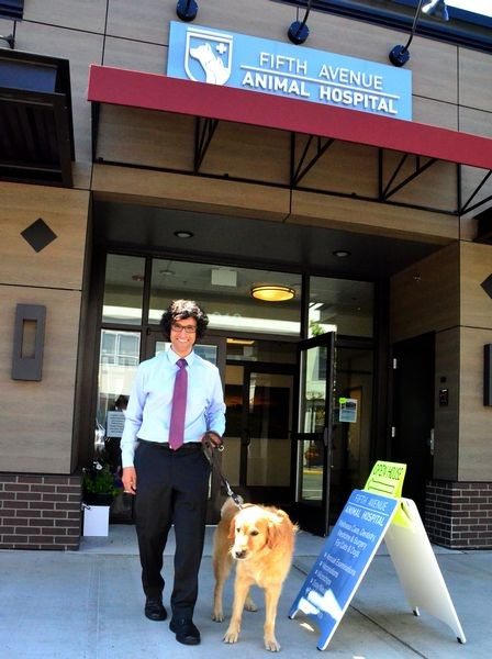 """Dr. Chris Garg greets Rocky, a 6-year-old Golden Retriever who dropped in for the open house.  Rocky, a certified therapy dog, is owned by Edmonds CPA John Weiss.  """"He's retired as a therapy dog, """" quipped Weiss.  """"He's a tax dog now!"""""""