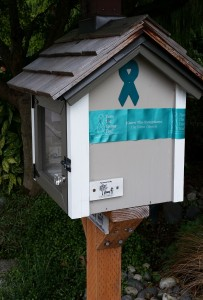 My Little Free Library, decorated for OVCA Awareness.