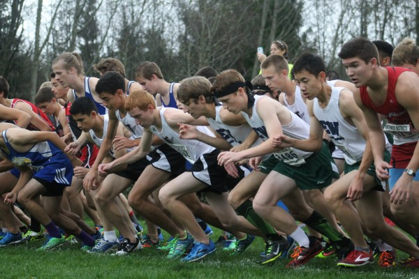 The MTHS Hawks (left, in white and black) and the E-W Warriors (right, in white and green) take off as the gun sounds to start the 3A boys race at districts. (Photo by Doug Petrowski)