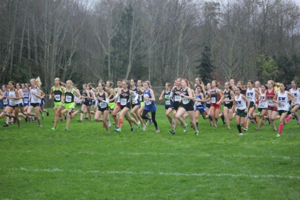 The 3A girls begin their race at the District 1 Cross Country Championships on Saturday at South Whidbey High School. Among the runners are the Edmonds-Woodway Warriors (right, in green and white), including the eventually race winner Yukino Parle (far right, in pink socks). (Photo by Christine Ong)