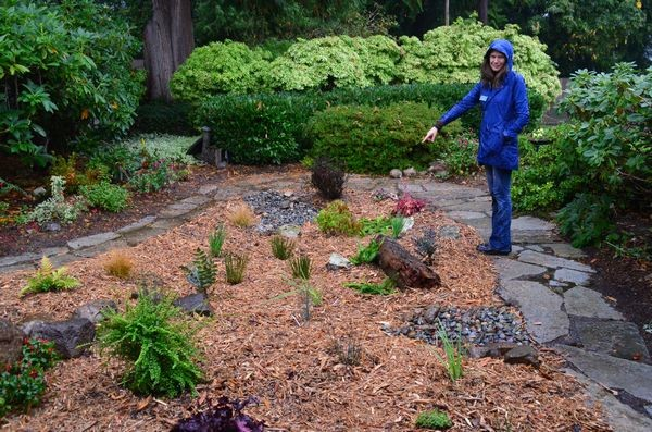 Kate Riley, Program Manager and resident rain garden expert for the Snohomish Conservation District points out how this rain garden absorbs and traps runoff water.