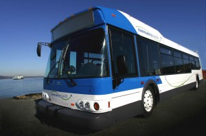 CT bus photo