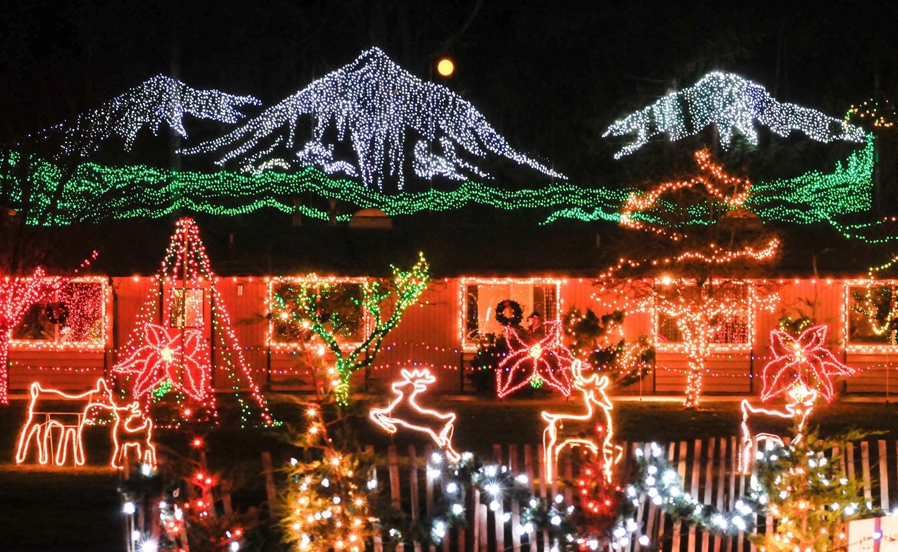 Day Trip Discoveries: Get in holiday spirit at The Lights ...